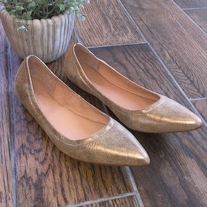 Linea Paolo / NICO pointy toed ballet flat